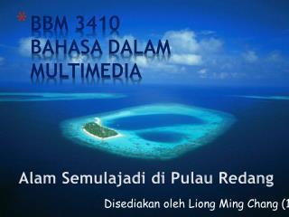 BBM 3410 BAHASA DALAM MULTIMEDIA