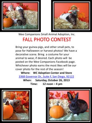 Wee Companions Small Animal Adoption, Inc. FALL PHOTO CONTEST