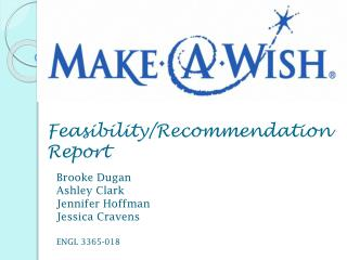 Feasibility/Recommendation Report