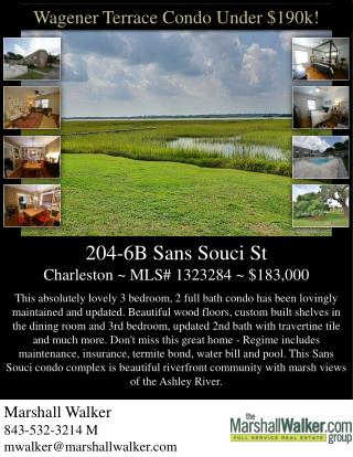 204-6B Sans  Souci  St Charleston ~ MLS# 1323284 ~ $183,000