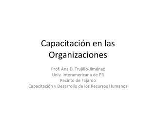 Capacitación en las Organizaciones