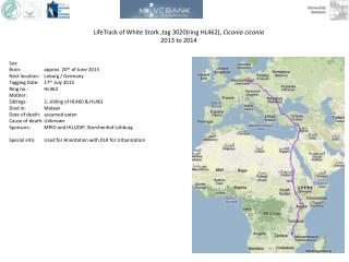 LifeTrack  of White Stork ,tag  3020(ring HL462),  Ciconia ciconia 2013 to  2014