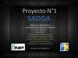 Proyecto N°1