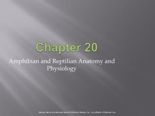 Amphibian and Reptilian Anatomy and Physiology