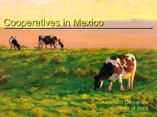 Cooperatives in Mexico