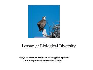 Lesson 5: Biological Diversity