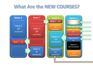 What Are the NEW COURSES?