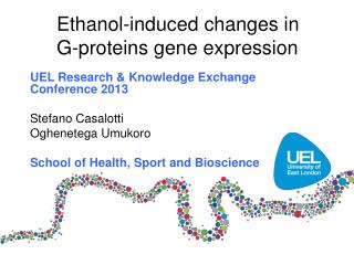 Ethanol-induced changes in G-proteins gene expression