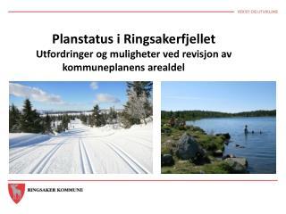 Planstatus i Ringsakerfjellet Utfordringer og muligheter ved revisjon av kommuneplanens arealdel