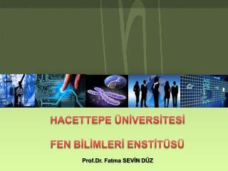 HACETTEPE ÜNİVERSİTESİ FEN  BİLİMLERİ  ENSTİTÜSÜ Prof.Dr . Fatma SEVİN  DÜZ