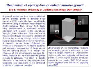 Mechanism of  epitaxy -free oriented nanowire growth