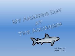 My Amazing Day at  The Aquarium
