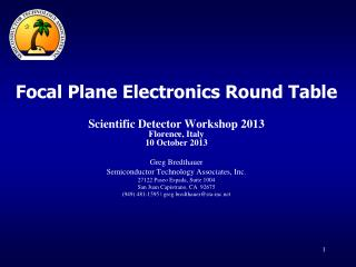 Focal Plane Electronics Round Table Scientific Detector Workshop 2013  Florence, Italy