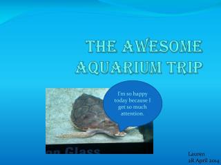 The Awesome Aquarium Trip