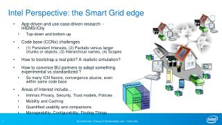 Intel Perspective: the Smart Grid edge