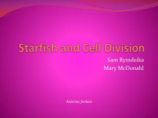 Starfish and Cell Division