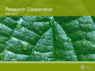 Research  Cooperation Sida 2013