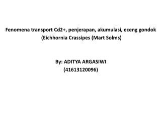 F enomena transport Cd2+, penjerapan, akumulasi, eceng gondok  (Eichhornia Crassipes (Mart Solms)