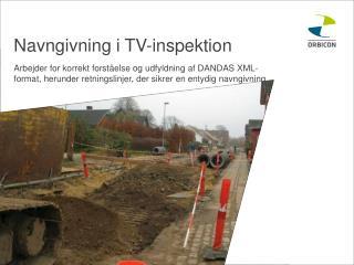 Navngivning i TV-inspektion