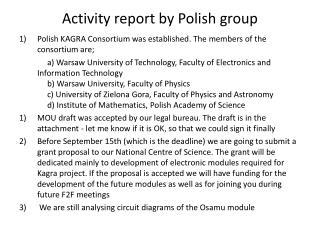 Activity report by Polish group