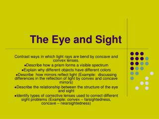 The Eye and Sight