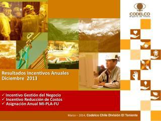 Resultados Incentivos Anuales  Diciembre  2013
