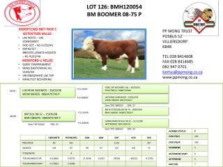 LOT  126:  BMH120054 BM BOOMER 08-75 P