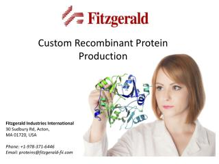 Custom Recombinant Protein  Production