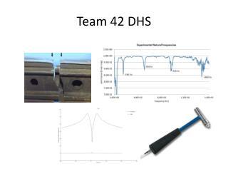 Team 42 DHS