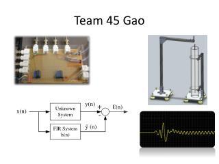 Team 45 Gao