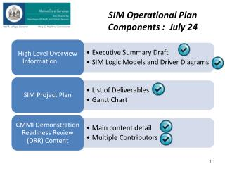 SIM Operational Plan Components :  July 24