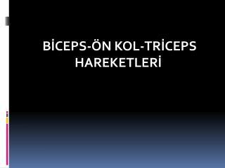 BİCEPS-ÖN KOL-TRİCEPS HAREKETLERİ