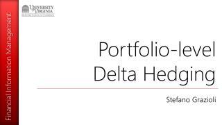 Portfolio-level Delta Hedging