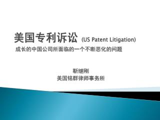 美国专利诉讼  (US Patent Litigation)