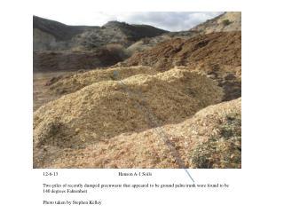 12-6-13                                                   Hanson A-1 Soils