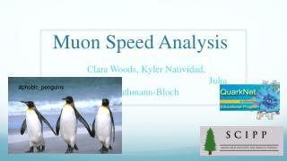Muon Speed Analysis