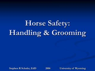 Horse Safety: Handling  Grooming