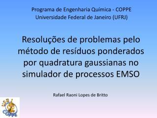 Programa de Engenharia Qu�mica - COPPE Universidade Federal de Janeiro (UFRJ)