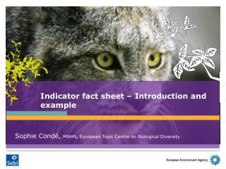 Indicator fact sheet � Introduction and example