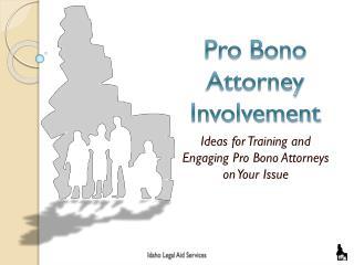 Pro Bono Attorney Involvement