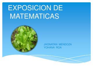 EXPOSICION DE  MATEMATICAS