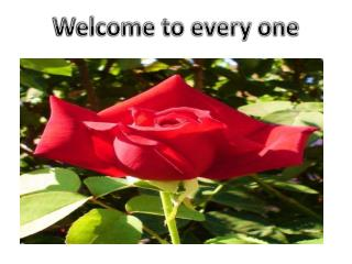 Welcome to every one