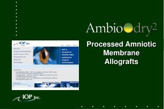 Processed Amniotic Membrane Allografts