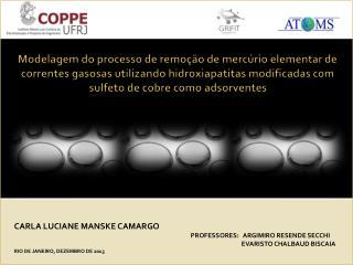 CARLA LUCIANE MANSKE CAMARGO PROFESSORES:   ARGIMIRO RESENDE SECCHI