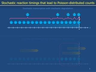 Stochastic reaction timings that lead to Poisson-distributed counts