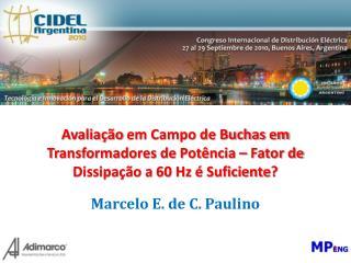 Marcelo E. de C. Paulino
