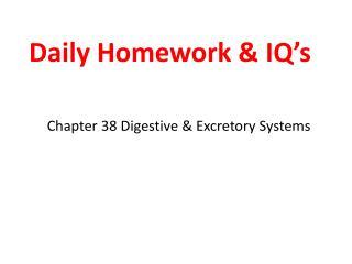Daily Homework & IQ's