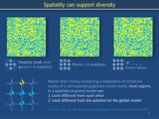 Spatiality can support diversity