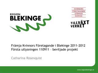 Främja Kvinnors Företagande i Blekinge 2011-2012 Första utlysningen 110911 – beviljade projekt