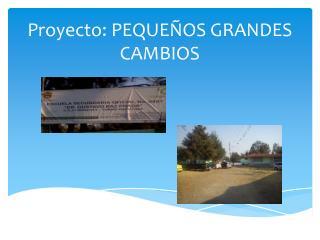 Proyecto: PEQUE�OS GRANDES CAMBIOS